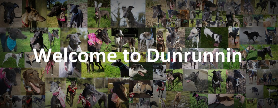 Welcome to Dunrunnin